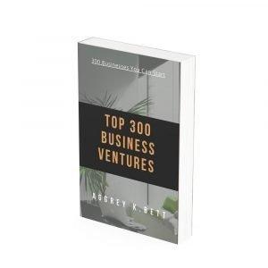 300 Business Ventures To Start Ebook